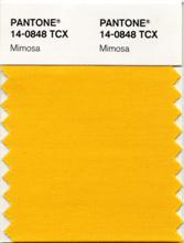 Color2009