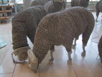 Telephone_sheep