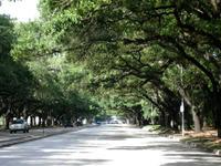 Houston_boulevard
