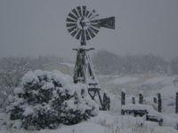 Windmillsnow